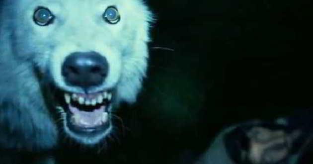 Thriller de terror 'Nightlight' tem primeiro trailer divulgado