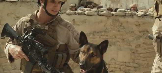 'Max': Trailer e poster do filme sobre um cão dos fuzileiros navais dos EUA
