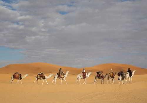 Queen of the Desert6