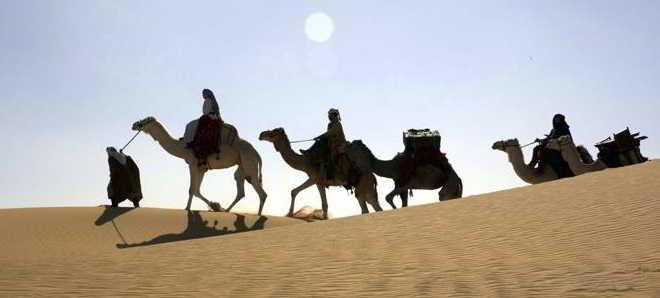 Queen of the Desert_imagens