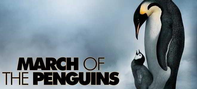 Documentário 'A Marcha dos Pinguins' vai ter uma continuação