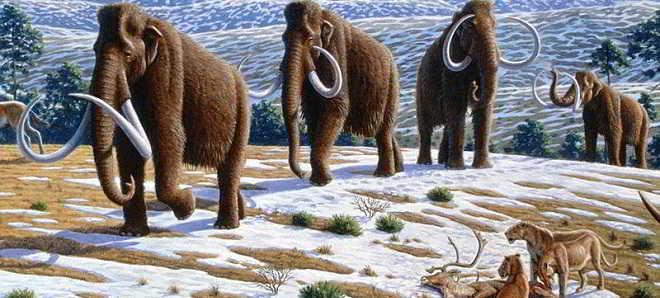 'Wooly' novo projeto da Fox promete ser o novo Parque Jurássico