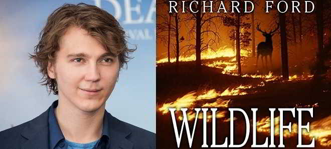 Paulo Dano vai estrear-se como realizador na adaptação do romance 'Wildlife'