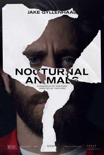 nocturnal-animals_jake-gyllenhaal