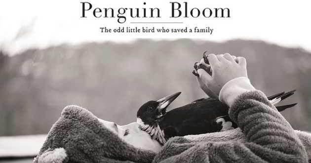 Shaun Grant vai escrever a adaptação de 'Penguin Bloom' protagonizada por Naomi Watts