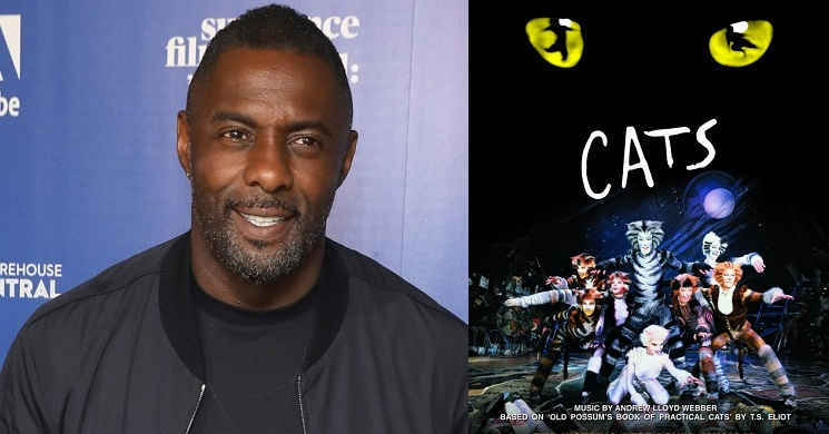 Idris Elba prestes a juntar-se a Ian McKellen e Taylor Swift no elenco da adaptação do musical