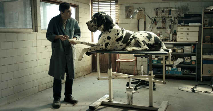 Trailer português do filme Dogman