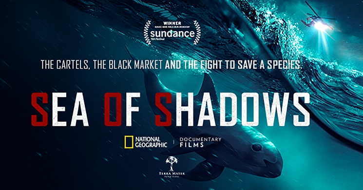 Estreia do documentário Sea of Shadows
