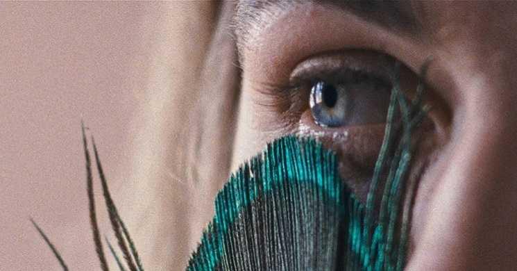 """Filme português """"A Metamorfose dos Pássaros"""" premiado na Berlinale"""