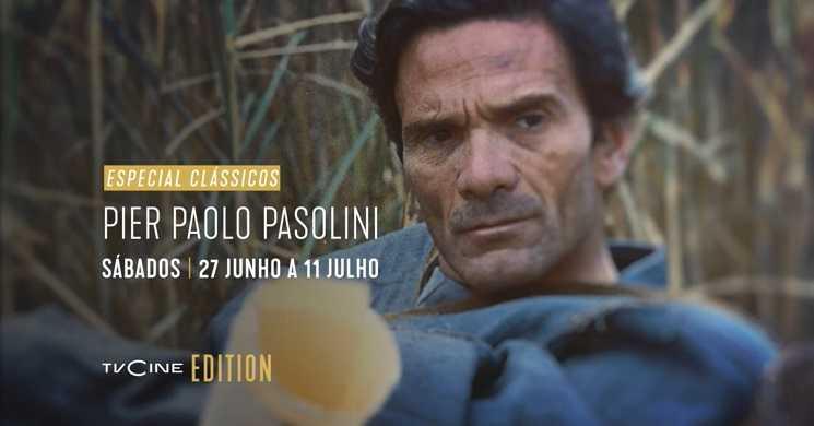 Especial Pier Paolo Pasolini no TVCine Edition
