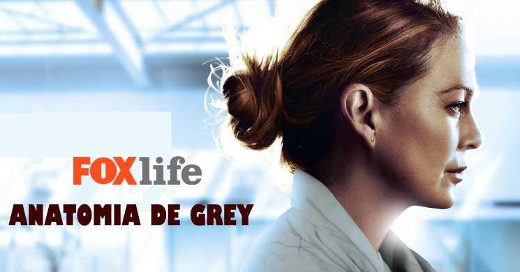 Fox Life estreia temporada 17 de Anatomia de Grey