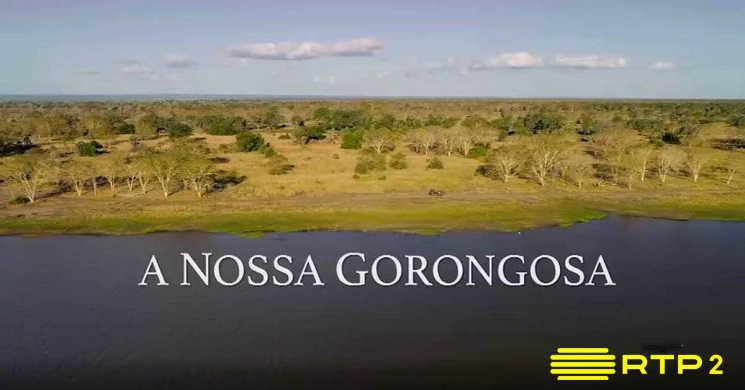 RTP2 estreia o documentário A Nossa Gorongosa