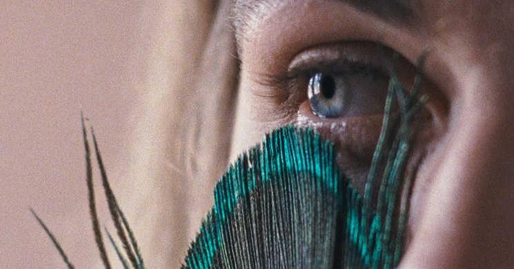 Filme A Metamorfose dos Pássaros estreia a 7 de outubro
